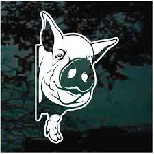 Pig Car Decals Stickers Decal Junky