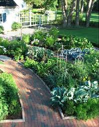 front yard vegetable gardens garden