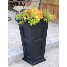 love these planters from costco