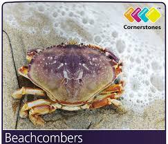 FS2 & KS1 Cornerstones Project – Beachcombers, combining – Who ...