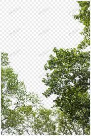 Lovepik صورة Png 400633975 Id الرسومات بحث صور أوراق سماء