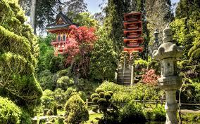 anese zen garden live wallpaper free