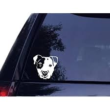 Tshirt Rocket Pit Face Pit Bull Pitbull Dog Vinyl Car Decal Laptop Decal Car Window Wall Sticker 8in White Buy Products Online With Ubuy Bahrain In Affordable Prices B012ejl2jc