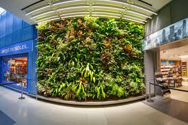 montreal airport s living wall has so