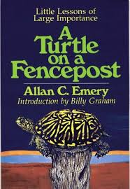 A Turtle On A Fencepost Little Lessons Of Large Importance By Allan C Emery