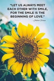 quotes about love and flowers quotesgram cc flowers lake city fl