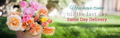flower delivery online s no florist ferns n petals