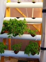 diy hydroponic system and hydroponic garden