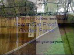 How To Cat Proof A Garden Fence Video Dailymotion