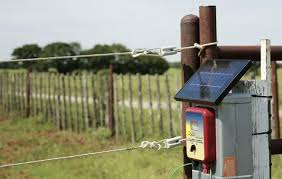 Best Electric Fence Charger For Cattle That Is Effective Safe 2019