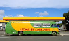 New Zealand's Push to Legalize Medical Marijuana Picks Up Momentum