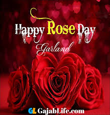 garland happy rose day pictures quotes images