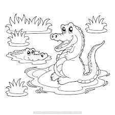 Twee Krokodillen Bij Het Water Kleurplaten Krokodillen Dieren