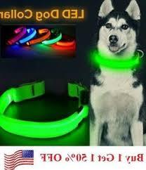 Adjustable Dog Collar Dogcollari Com