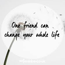 friendship quotes funny best friend quotes friendship sayings