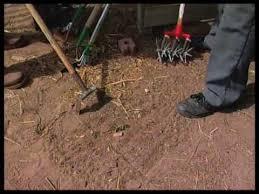 tool for weeding the garden