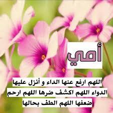 غرد بصورة عرب عرب فوتو صور صورة صور عرض صورة عرض عرض نشر