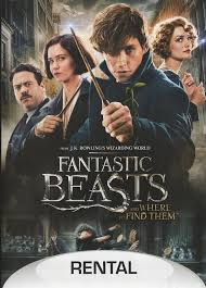 Amazon.com: Fantastic Beasts and Where to Find Them (DVD): Movies & TV