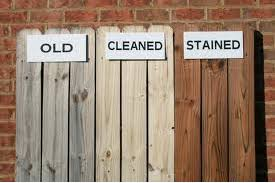 Painting Vs Staining Fences Expert Tips Inside