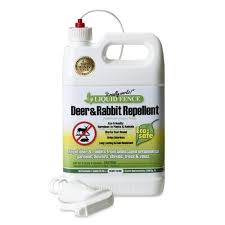Liquid Fence 1 Gallon Ready To Use Liquid Fence Deer And Rabbit Repellent At Lowes Com