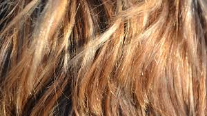 lice eggs from hair using home remes