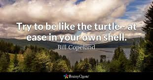 47 Turtle Quotes Inspirational Quotes At Brainyquote