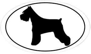 Amazon Com Cafepress Miniature Schnauzer Silhouette Oval Sticker Oval Bumper Sticker Euro Oval Car Decal Home Kitchen