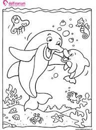 19 Beste Afbeeldingen Van Dolfijn Dolfijnen Zeedieren En Dieren