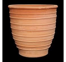 the three horseshoes exara cretan planter