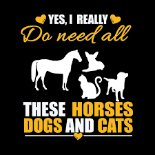 The Second Half Price Do Need All Horse Dog Cat Car Sticker 15 15cm Car Styling Motorcycle Sticker Car Accessory Home Decals Car Sticker Cat Car Stickersmotorcycle Sticker Aliexpress