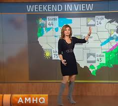 THE APPRECIATION OF BOOTED NEWS WOMEN BLOG : WEATHER CHANNEL FANS  REJOICE!!!! JEN CARFAGNO LOOKS GREAT IN GREY SUEDE!!!