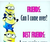 minion best friend quotes quotes mystiekevrouwen