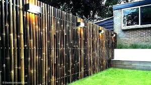 willow natural fence roller screens
