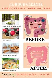 one day cleanse how to detox your