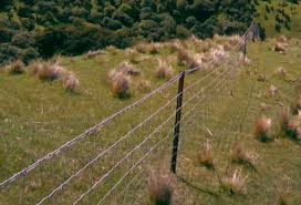 Wrc2010 Electric Fences