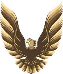 1980 Pontiac Firebird Parts Emblems And Decals Stencils And