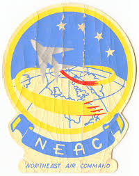 Late 1950s Usaf Northeast Air Command Painted Vinyl Decal Or Jacket Patch Flying Tiger Antiques Online Store