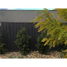 Matrix 2400 X 600mm Slate Grey Diamond Fence Extension Lattice