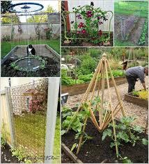 recycled trellis ideas for your garden