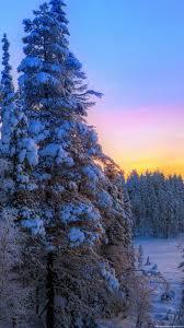 winter sunset hd wallpaper 50 images