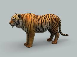 Tiger 3D Model in Wildlife 3DExport
