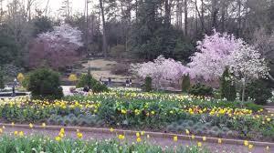 picture of sarah p duke gardens