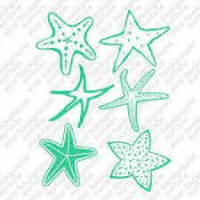 Starfish Star Fish Sea Ocean Life Stars Set Of 6 Teal 6 Decal Sticker Graphics Ebay