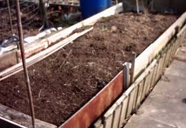 making raised beds will plywood and