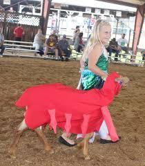 Bedford Fair Opens With Leadline Flash | Farm Shows & County Fairs |  lancasterfarming.com