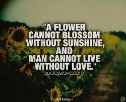 a flower cannot blossom out sunshine and man cannot live