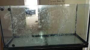 white cloudy thing on aquarium glass