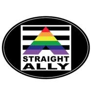 Straight Ally Square Rainbow Sticker 3 5 X 3 5 Gay Pride Supporter Lgbt Pride Car Bumper Decal Pride Shack