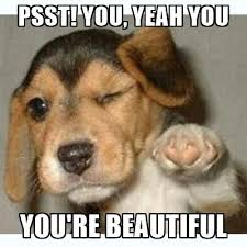 you are beautiful memes