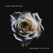 rose day wishes for best friend archives muddoo